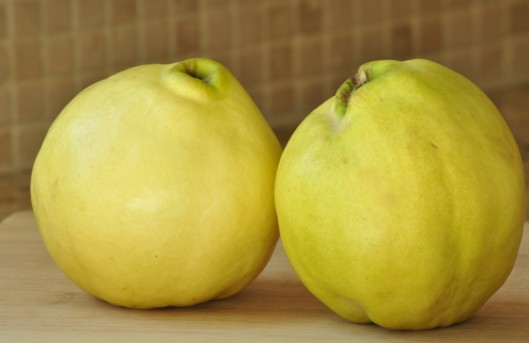Two Quince