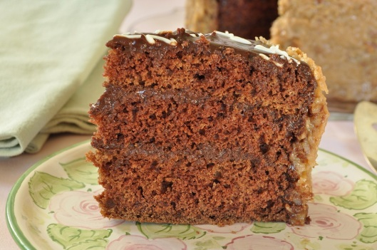 A Slice of German Chocolate Cake